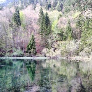 Die Fülle spiegelt sich in der Natur